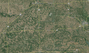 Image from Google Earth showing density of center pivot irrigation wells in the Great Bend Sand Prairie.