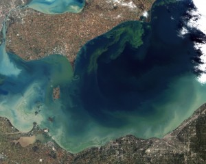 Erie Algae Bloom. Photo from NASA, via Wikimedia Commons